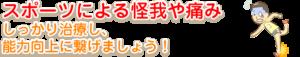 横須賀市北久里浜の鍼灸整骨院ひまわり スポーツによるケガの画像