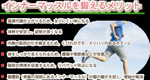 横須賀市北久里浜の鍼灸整骨院ひまわり インナーマッスルを鍛えるメリットの説明画像