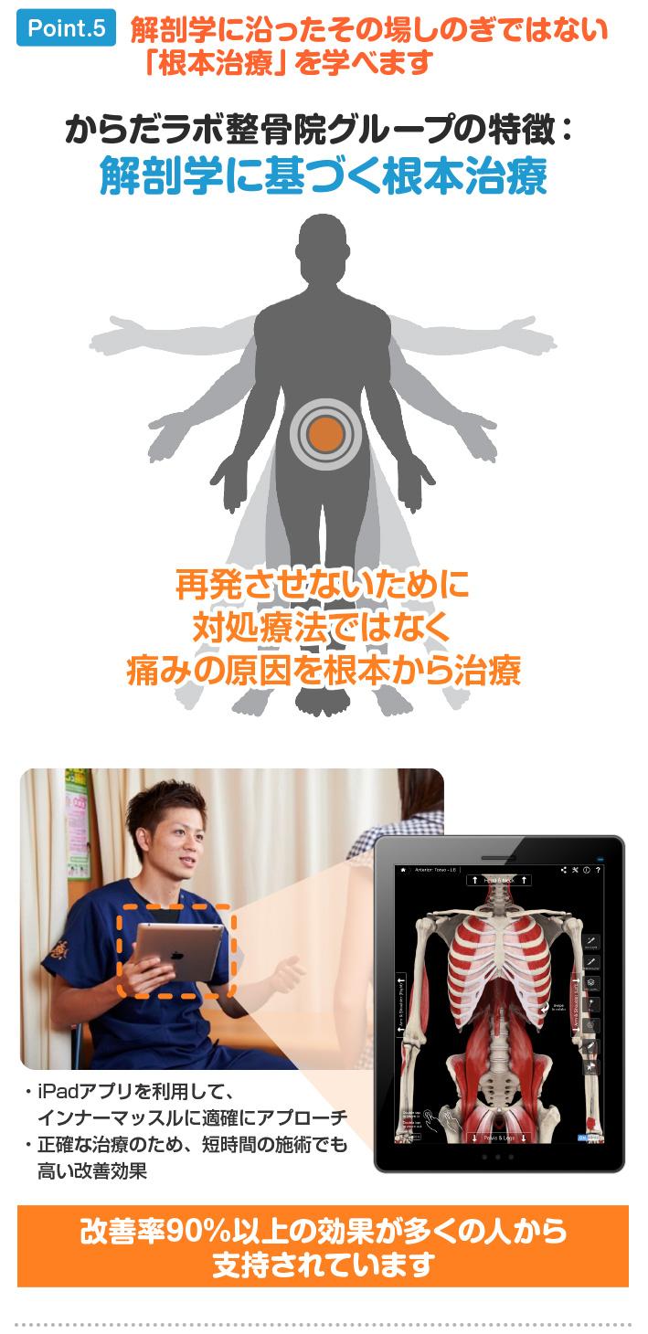 ポイント5:解剖学に沿った、その場しのぎではない「根本治療」を学べます。